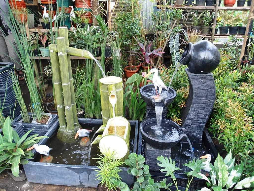 Memilih Jenis Taman Air yang Cocok Untuk Rumah Minimalis